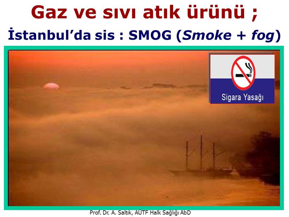 Gaz ve sıvı atık ürünü ; İstanbul'da sis : SMOG (Smoke + fog)