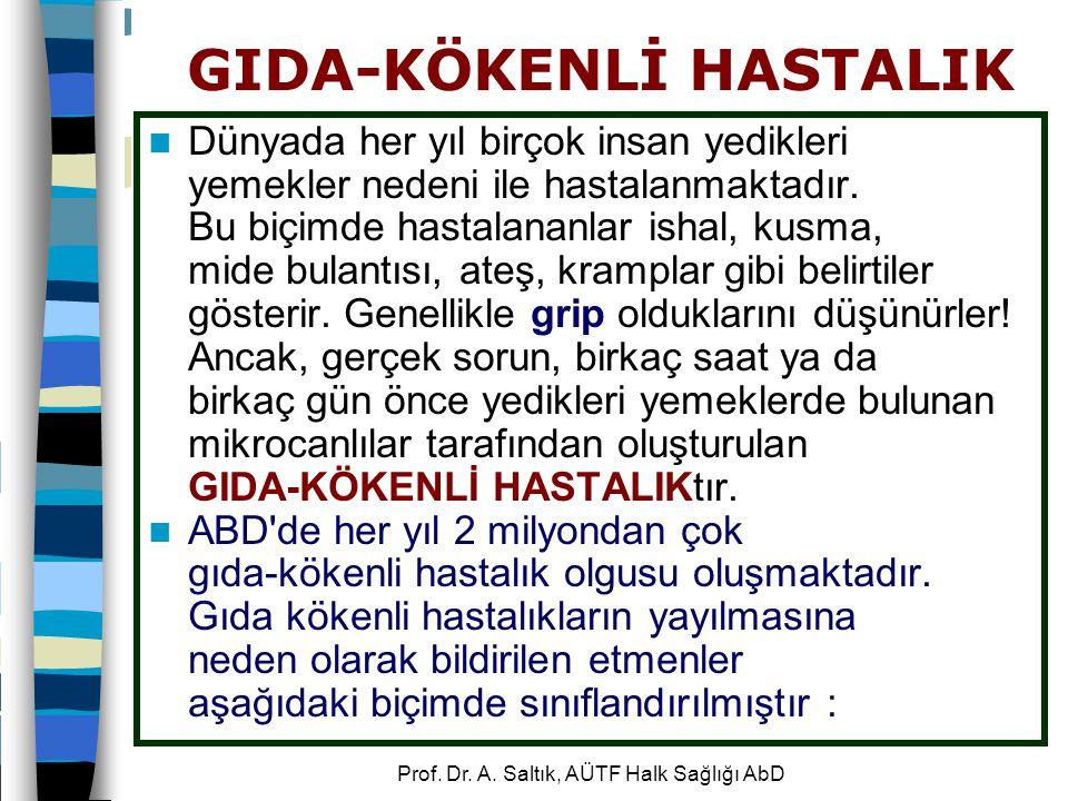GIDA-KÖKENLİ HASTALIK