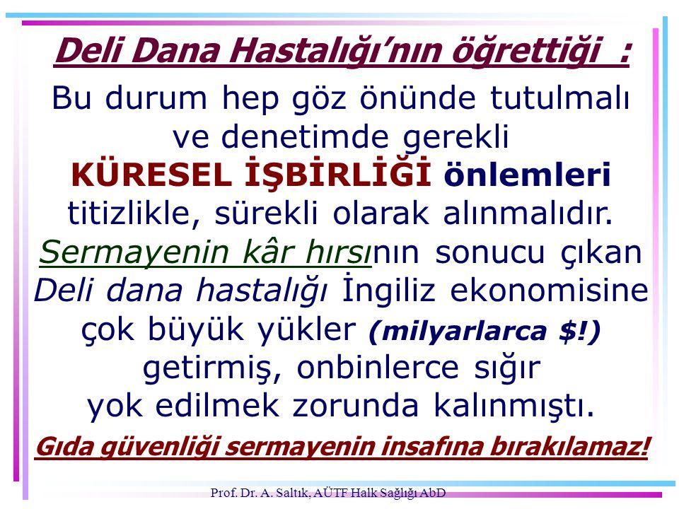 Deli Dana Hastalığı'nın öğrettiği :