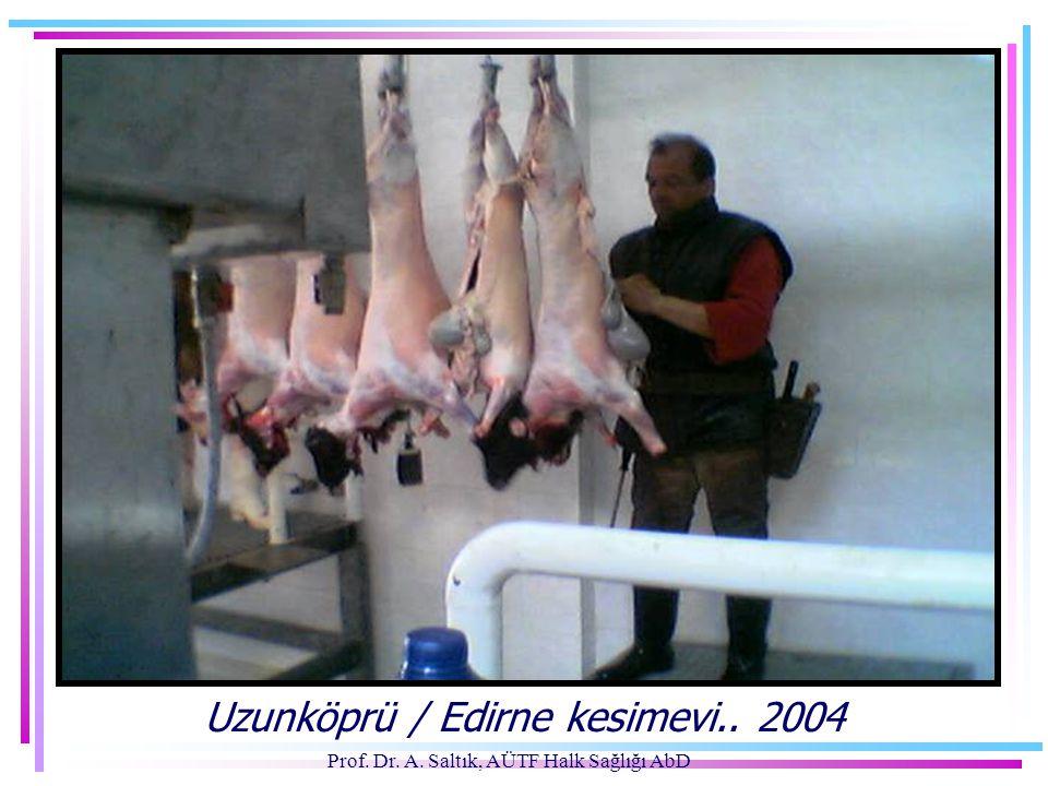 Uzunköprü / Edirne kesimevi.. 2004