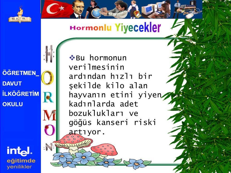 Hormonlu Yiyecekler