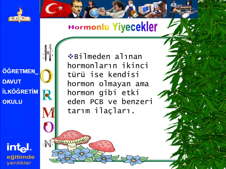 Hormonlu Yiyecekler Bilmeden alınan hormonların ikinci türü ise kendisi hormon olmayan ama hormon gibi etki eden PCB ve benzeri tarım ilaçları.