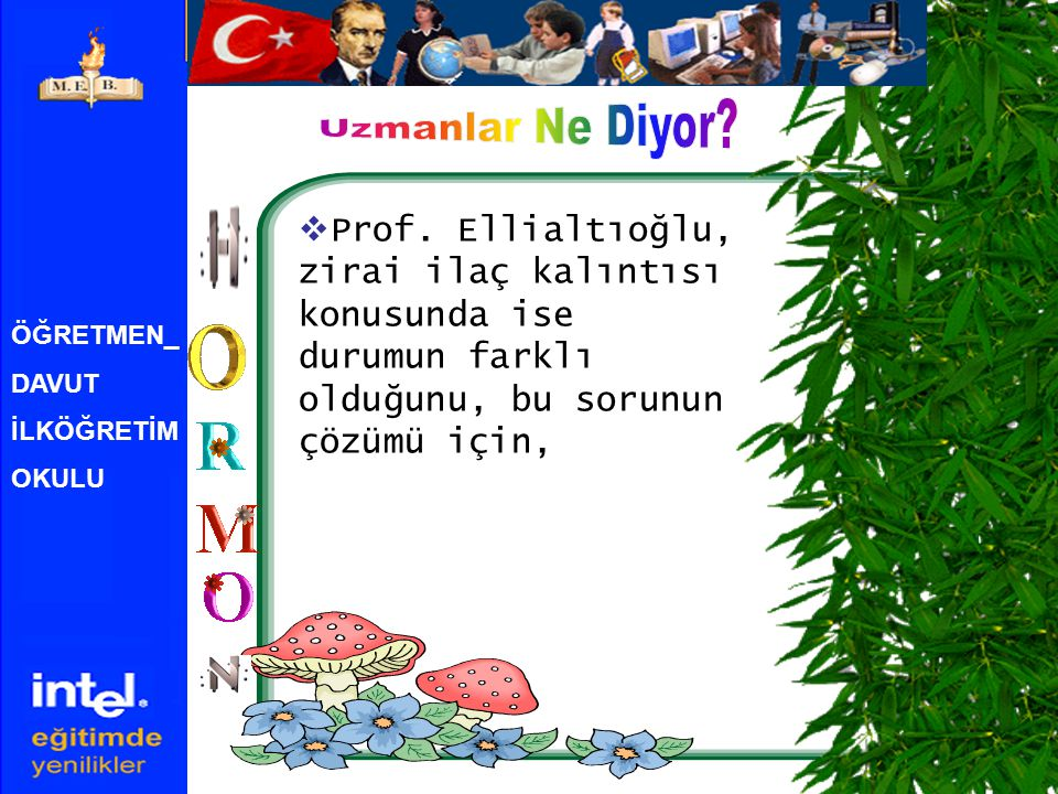 Uzmanlar Ne Diyor Prof. Ellialtıoğlu, zirai ilaç kalıntısı konusunda ise durumun farklı olduğunu, bu sorunun çözümü için,