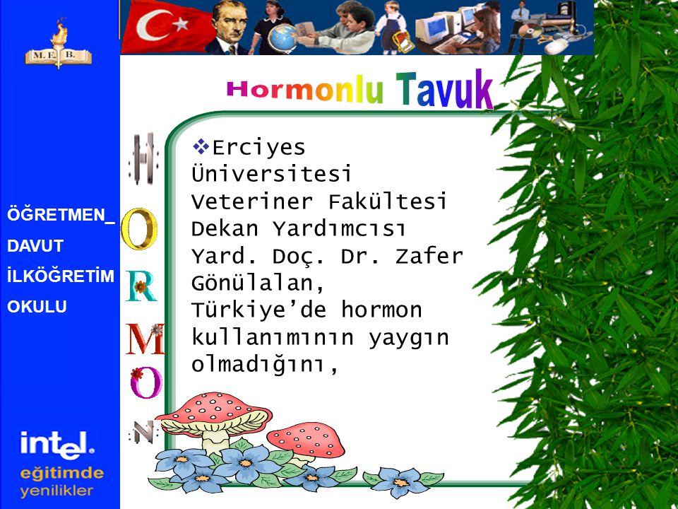 Hormonlu Tavuk