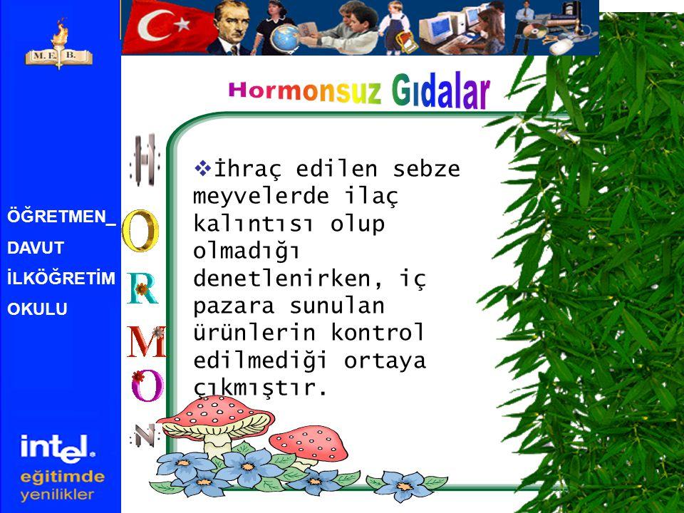 Hormonsuz Gıdalar