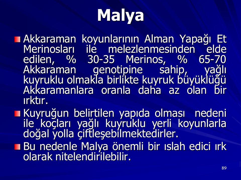 Malya