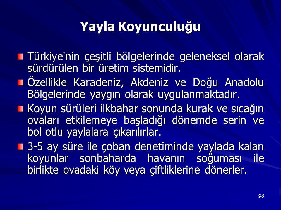 Yayla Koyunculuğu Türkiye nin çeşitli bölgelerinde geleneksel olarak sürdürülen bir üretim sistemidir.