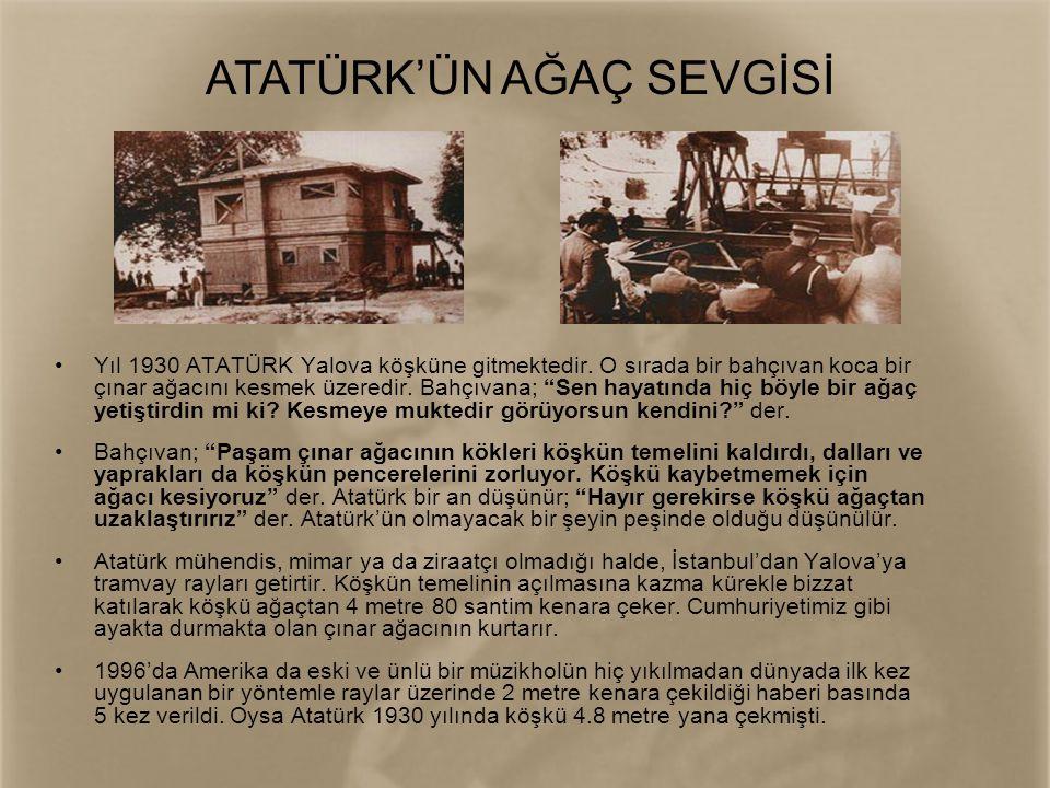 ATATÜRK'ÜN AĞAÇ SEVGİSİ