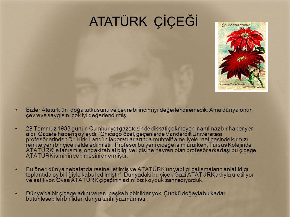 ATATÜRK ÇİÇEĞİ Bizler Atatürk'ün doğa tutkusunu ve çevre bilincini iyi değerlendiremedik. Ama dünya onun çevreye saygısını çok iyi değerlendirmiş.