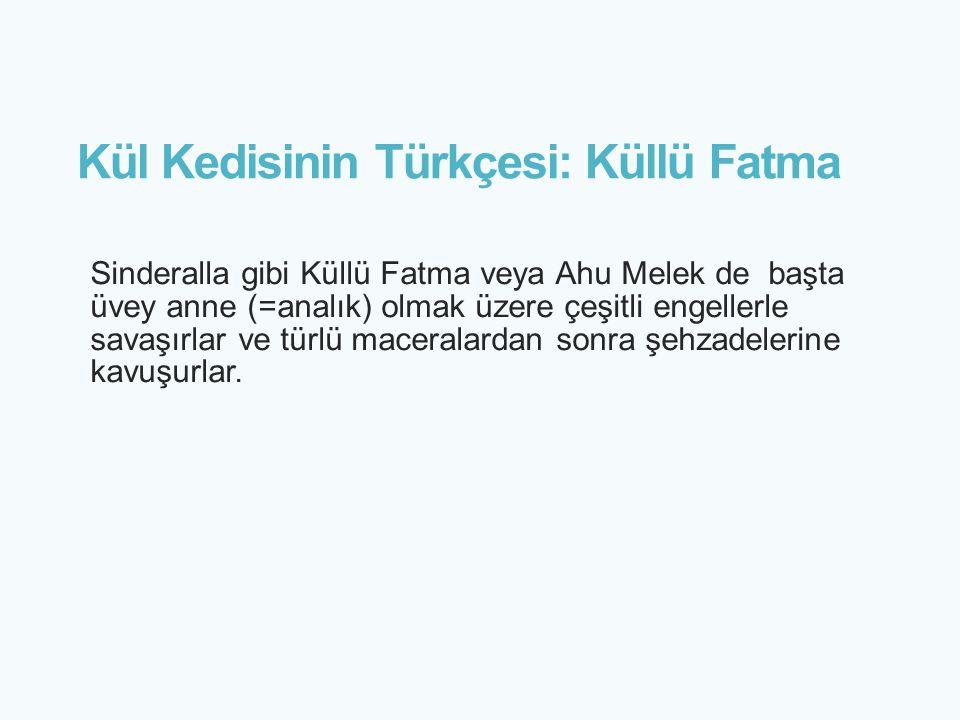 Kül Kedisinin Türkçesi: Küllü Fatma