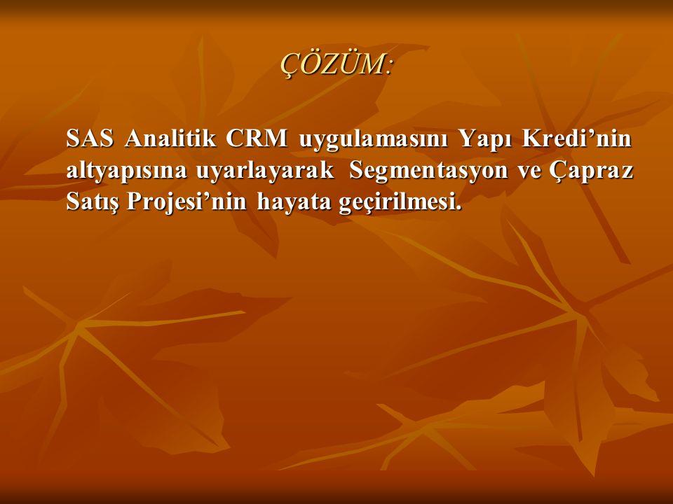 ÇÖZÜM: SAS Analitik CRM uygulamasını Yapı Kredi'nin altyapısına uyarlayarak Segmentasyon ve Çapraz Satış Projesi'nin hayata geçirilmesi.