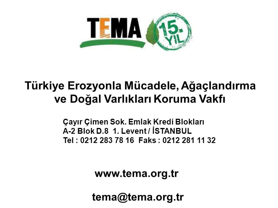 Türkiye Erozyonla Mücadele, Ağaçlandırma