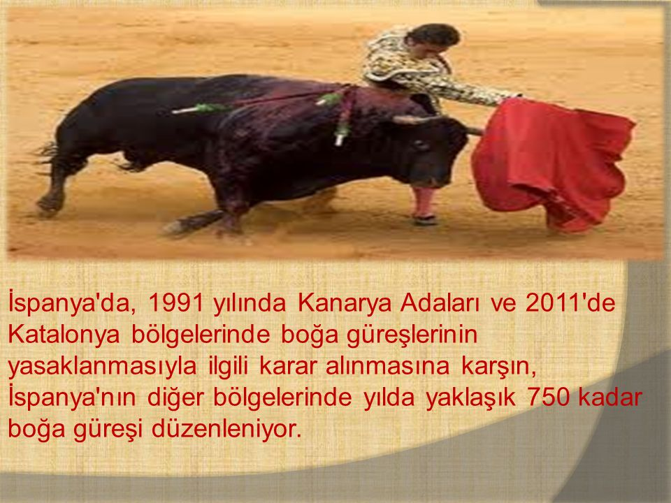 İspanya da, 1991 yılında Kanarya Adaları ve 2011 de Katalonya bölgelerinde boğa güreşlerinin yasaklanmasıyla ilgili karar alınmasına karşın, İspanya nın diğer bölgelerinde yılda yaklaşık 750 kadar boğa güreşi düzenleniyor.