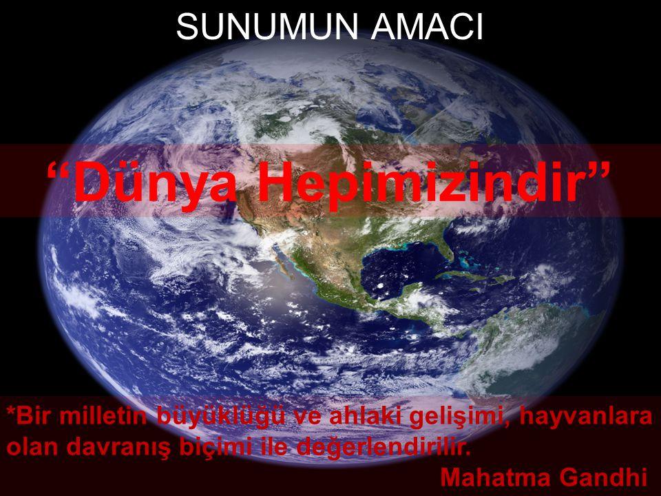 Dünya Hepimizindir SUNUMUN AMACI