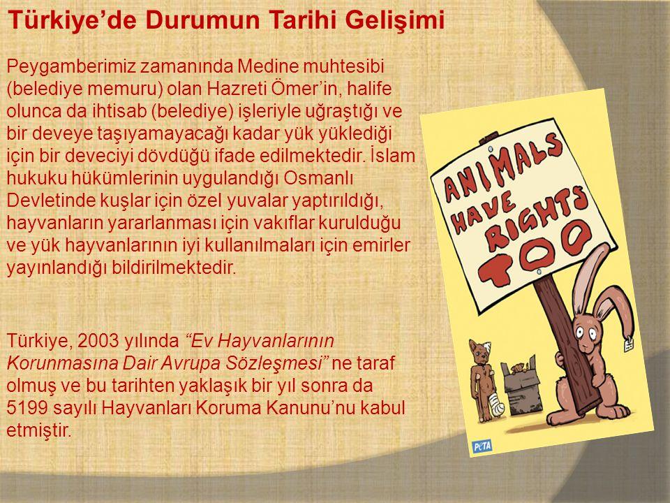 Türkiye'de Durumun Tarihi Gelişimi