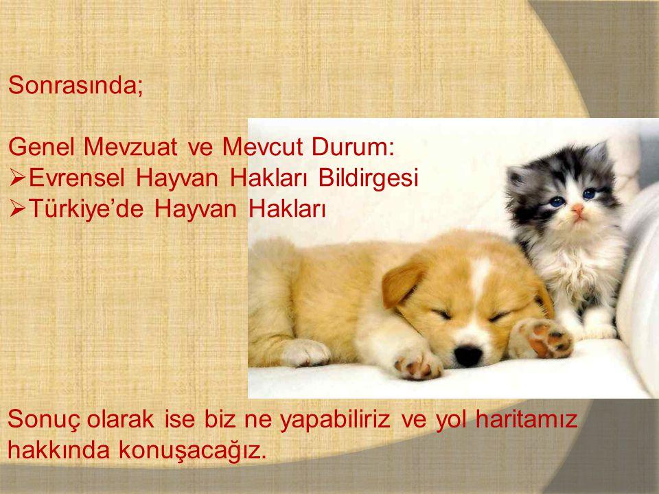 Sonrasında; Genel Mevzuat ve Mevcut Durum: Evrensel Hayvan Hakları Bildirgesi. Türkiye'de Hayvan Hakları.