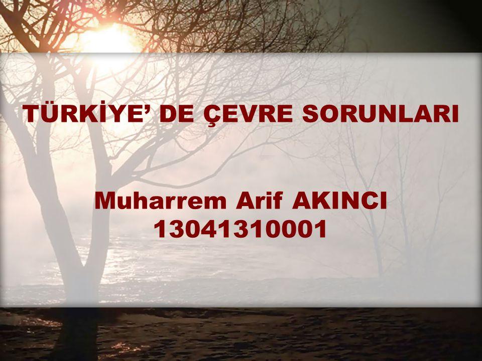 TÜRKİYE' DE ÇEVRE SORUNLARI