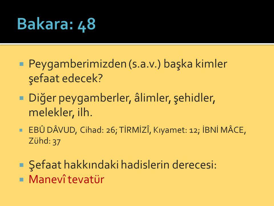 Bakara: 48 Peygamberimizden (s.a.v.) başka kimler şefaat edecek