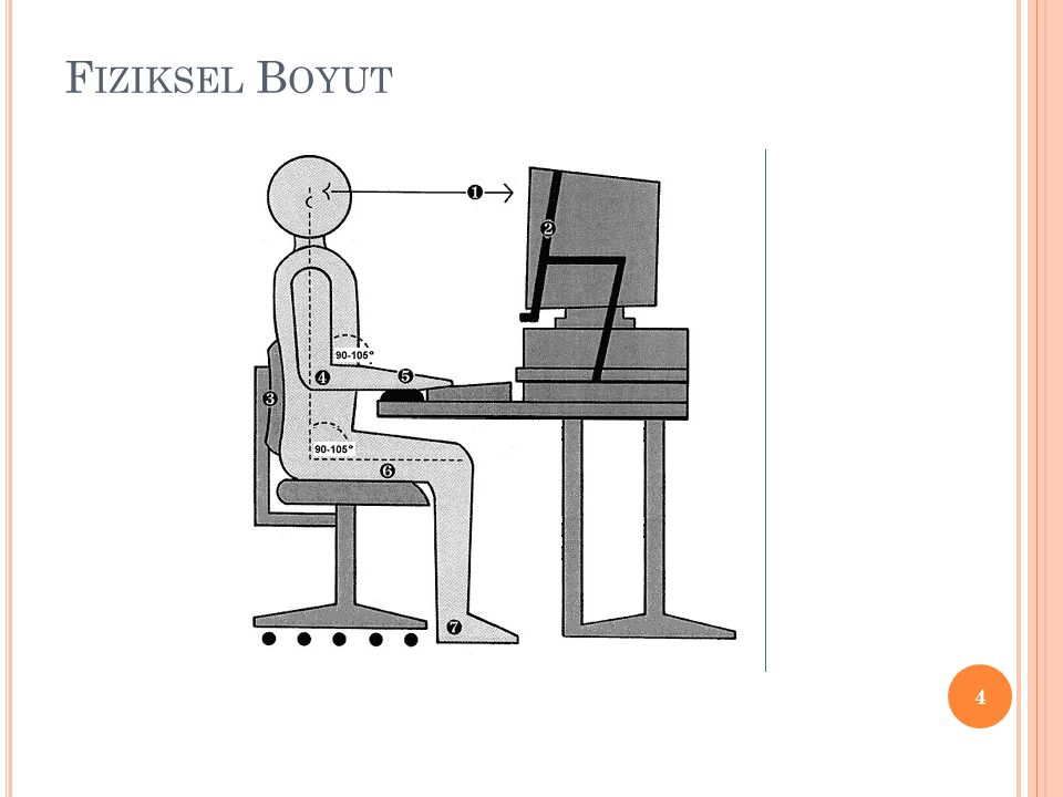 Fiziksel Boyut
