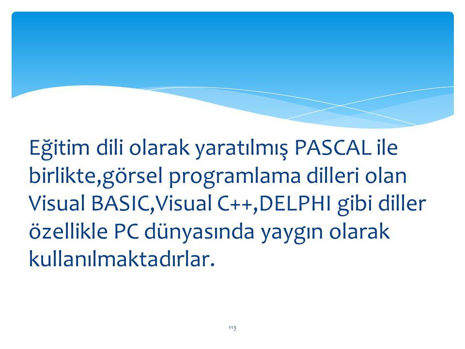 Eğitim dili olarak yaratılmış PASCAL ile birlikte,görsel programlama dilleri olan Visual BASIC,Visual C++,DELPHI gibi diller özellikle PC dünyasında yaygın olarak kullanılmaktadırlar.
