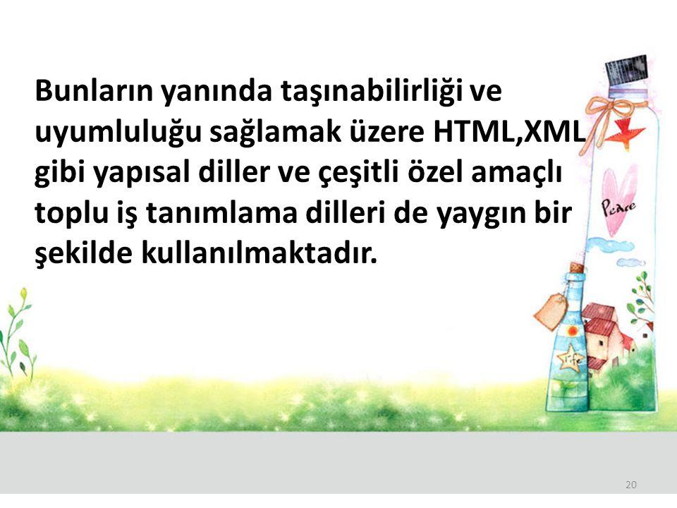 Bunların yanında taşınabilirliği ve uyumluluğu sağlamak üzere HTML,XML gibi yapısal diller ve çeşitli özel amaçlı toplu iş tanımlama dilleri de yaygın bir şekilde kullanılmaktadır.