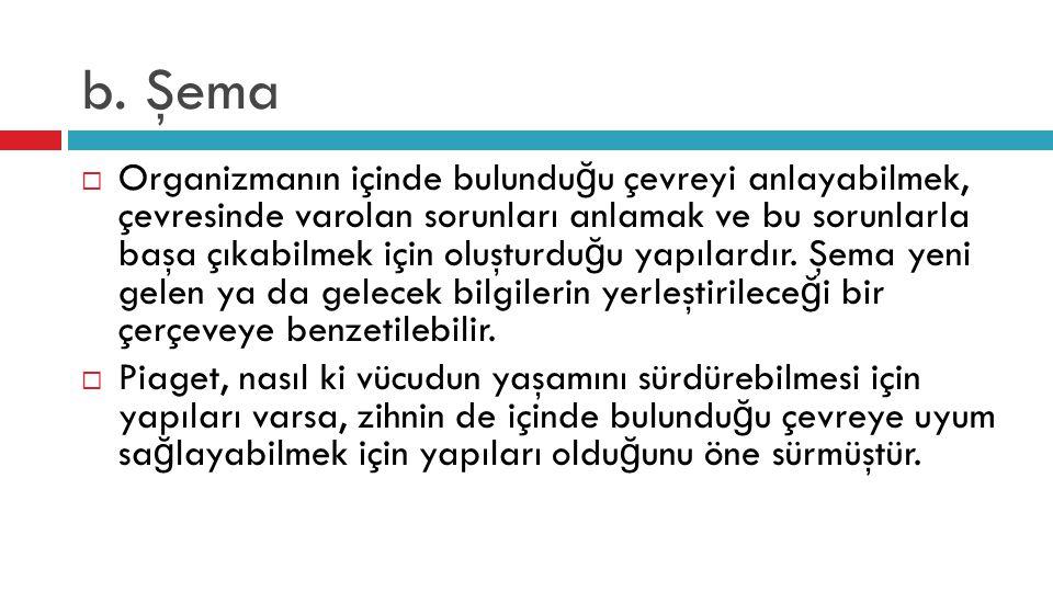 b. Şema