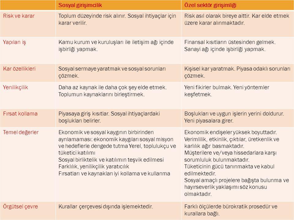 Sosyal girişimcilik ile özel sektör girişimciliği arasındaki farklar