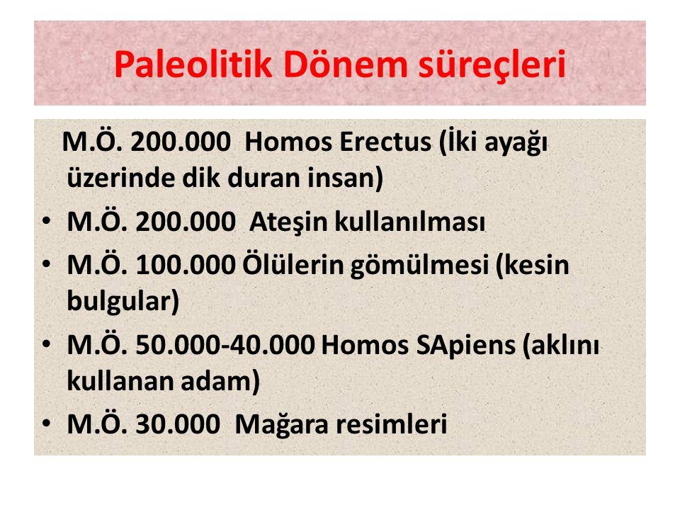 Paleolitik Dönem süreçleri