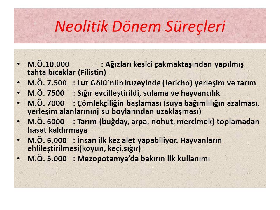Neolitik Dönem Süreçleri