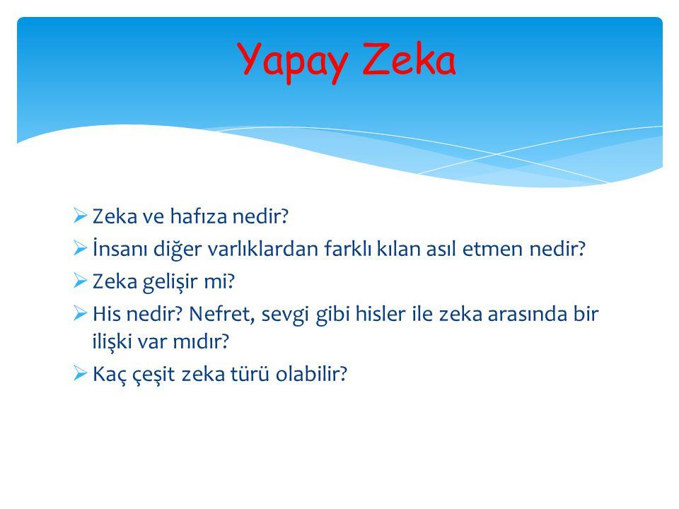 Yapay Zeka Zeka ve hafıza nedir