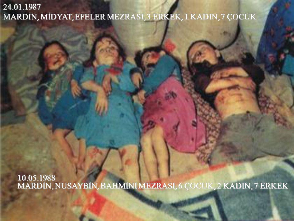 MARDİN, MİDYAT, EFELER MEZRASI, 3 ERKEK, 1 KADIN, 7 ÇOCUK