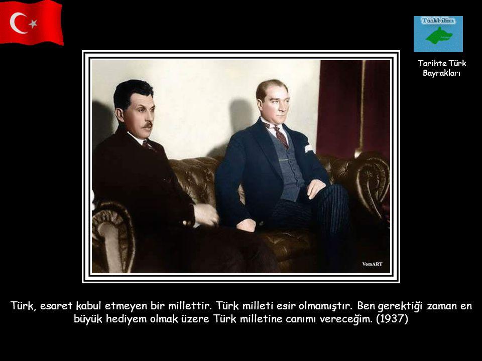 Tarihte Türk Bayrakları.