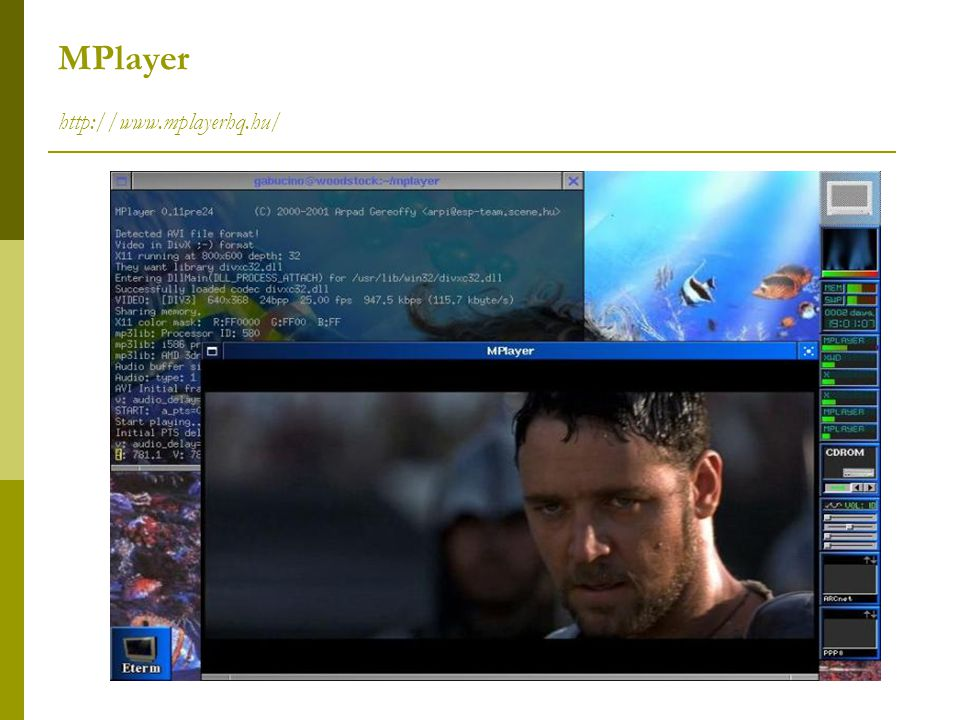 MPlayer http://www.mplayerhq.hu/