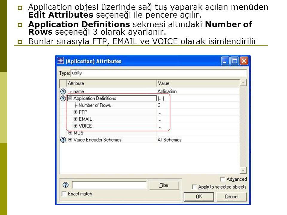 Application objesi üzerinde sağ tuş yaparak açılan menüden Edit Attributes seçeneği ile pencere açılır.