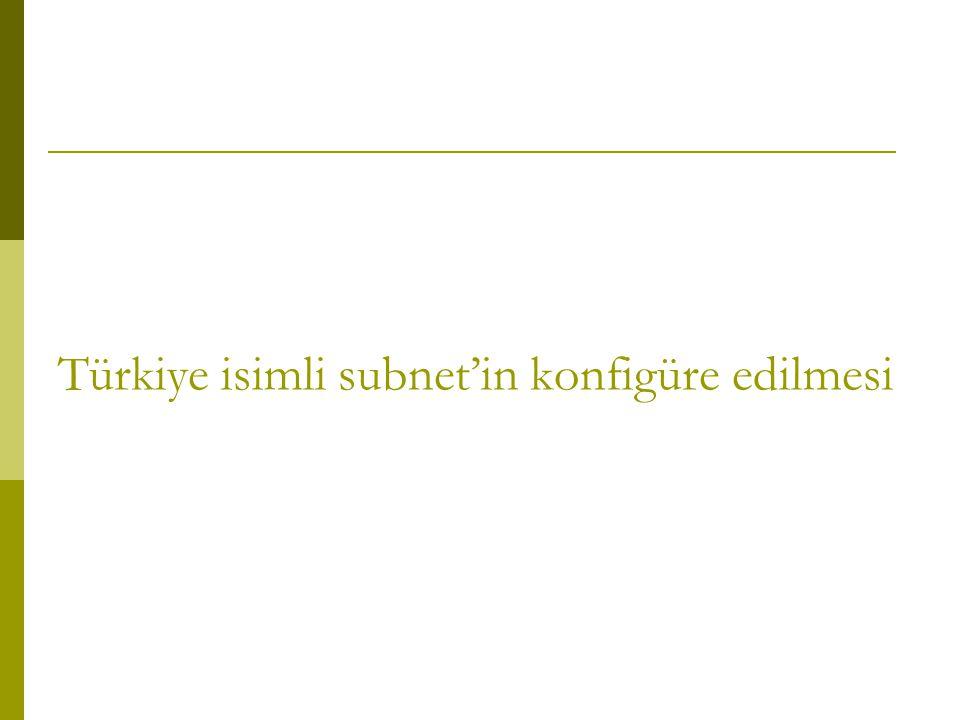 Türkiye isimli subnet'in konfigüre edilmesi
