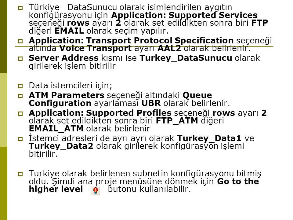 Türkiye _DataSunucu olarak isimlendirilen aygıtın konfigürasyonu için Application: Supported Services seçeneği rows ayarı 2 olarak set edildikten sonra biri FTP diğeri EMAIL olarak seçim yapılır.
