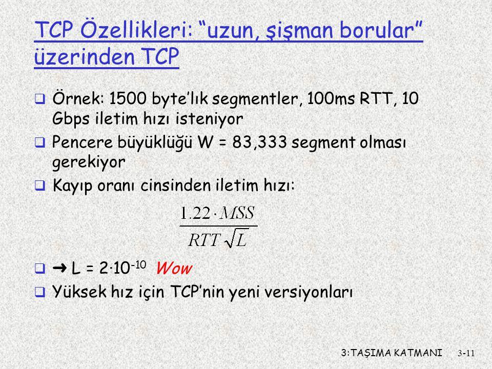TCP Özellikleri: uzun, şişman borular üzerinden TCP
