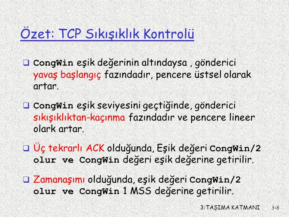 Özet: TCP Sıkışıklık Kontrolü