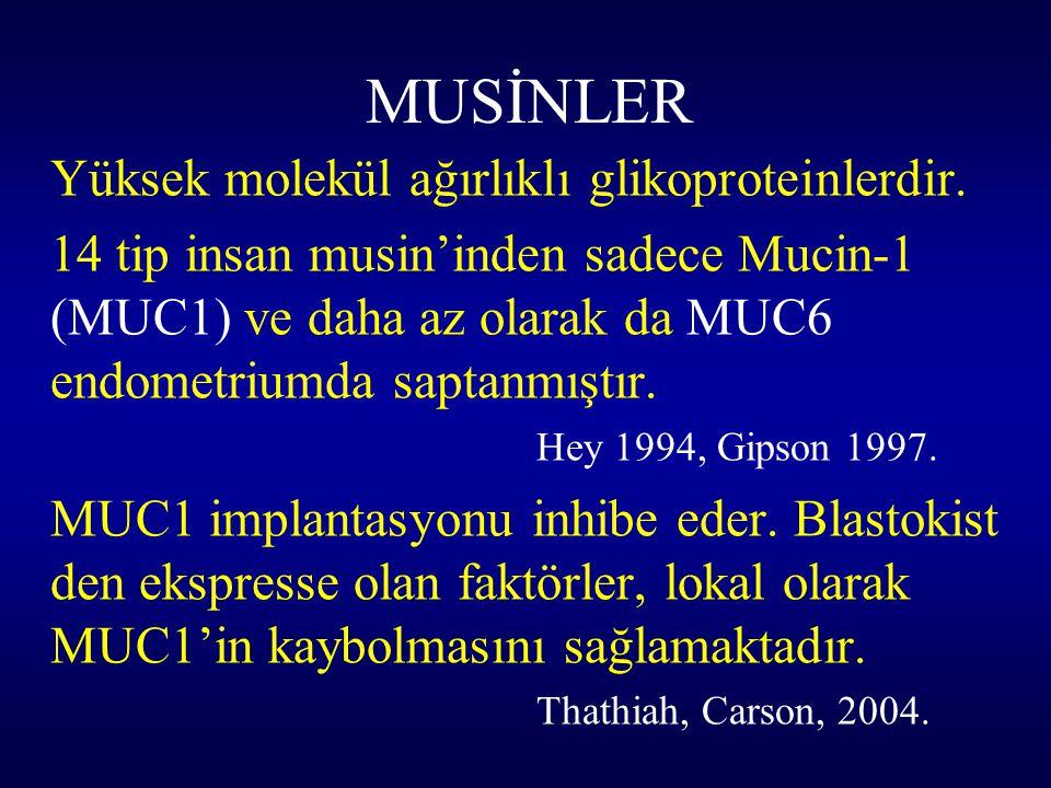 MUSİNLER Yüksek molekül ağırlıklı glikoproteinlerdir.