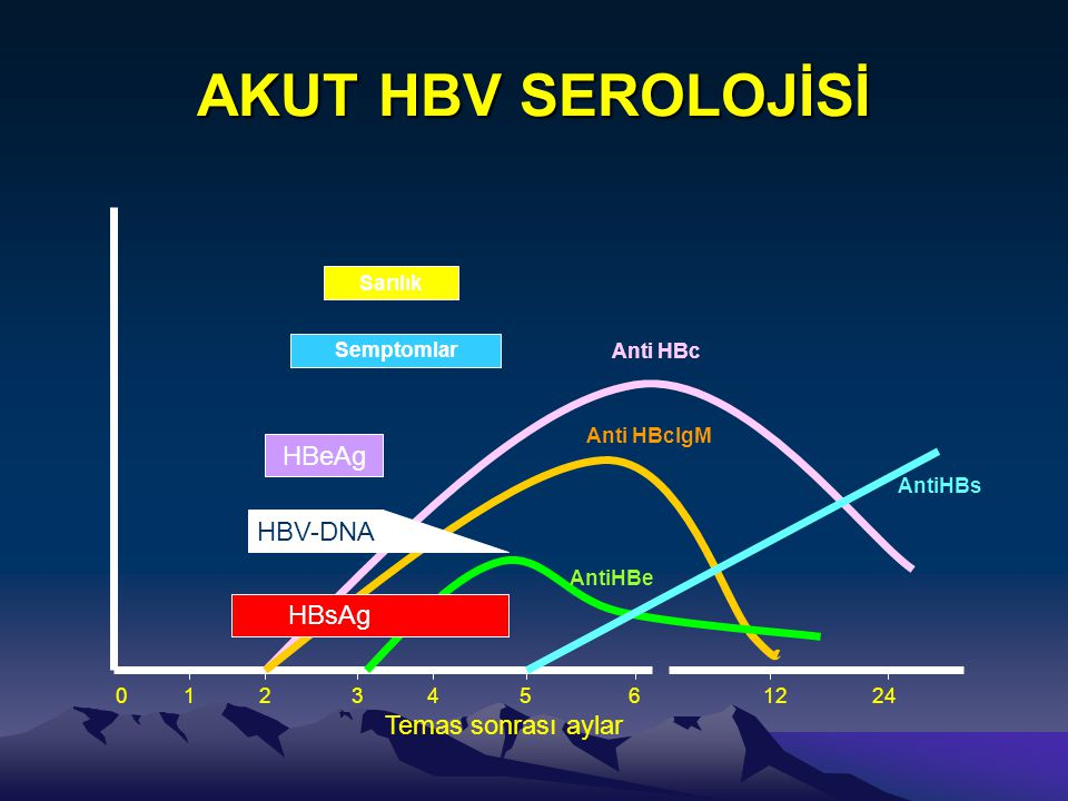 AKUT HBV SEROLOJİSİ HBeAg HBV-DNA HBsAg Temas sonrası aylar Sarılık