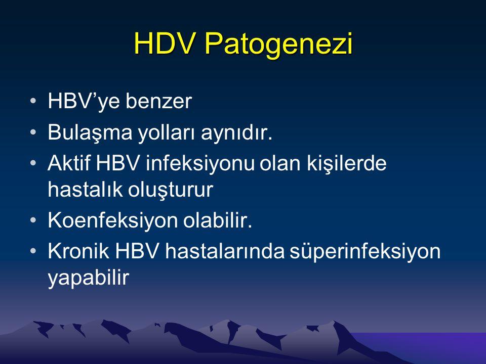 HDV Patogenezi HBV'ye benzer Bulaşma yolları aynıdır.