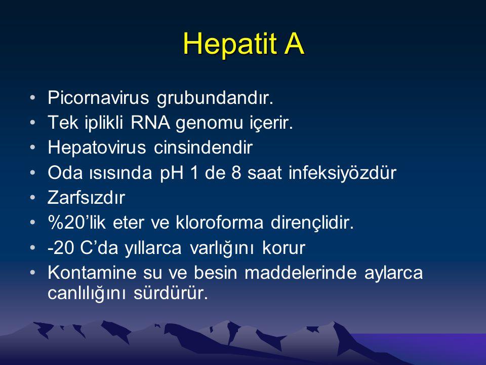 Hepatit A Picornavirus grubundandır. Tek iplikli RNA genomu içerir.