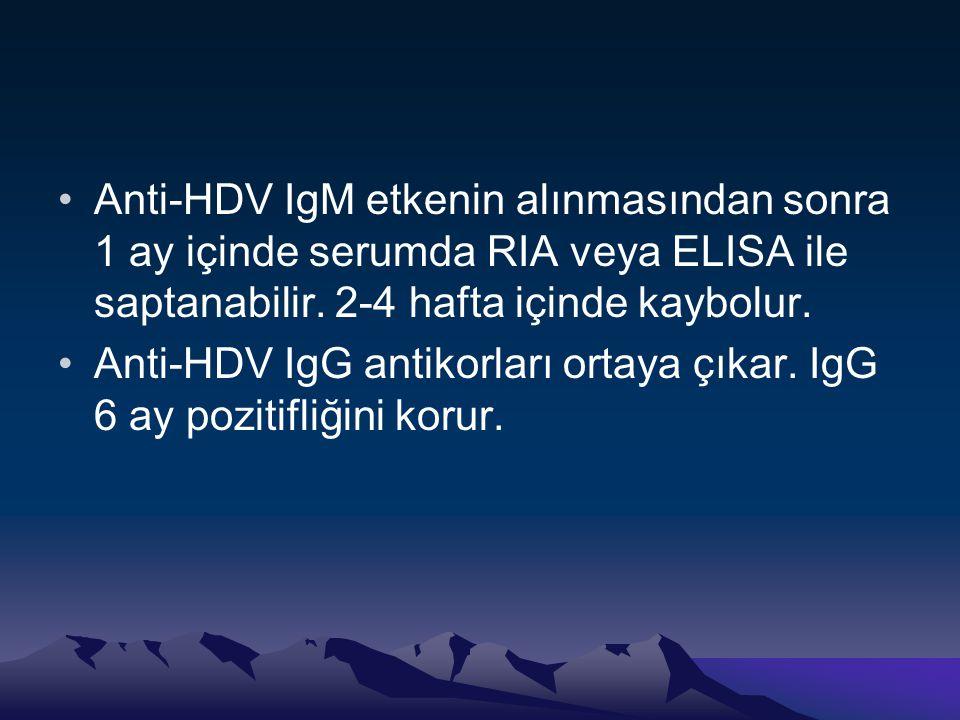 Anti-HDV IgM etkenin alınmasından sonra 1 ay içinde serumda RIA veya ELISA ile saptanabilir. 2-4 hafta içinde kaybolur.