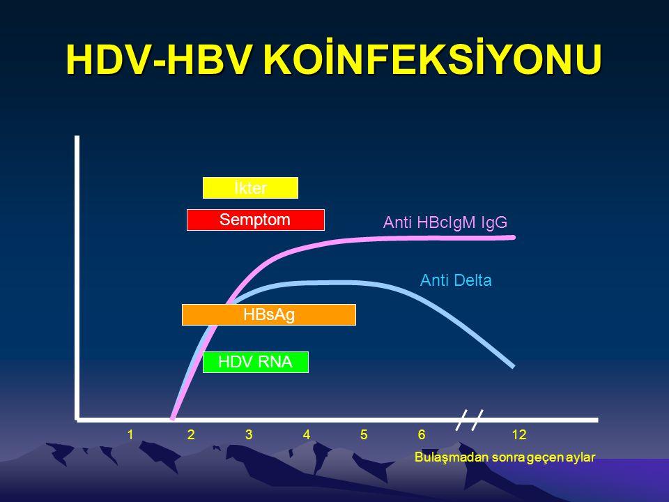 HDV-HBV KOİNFEKSİYONU