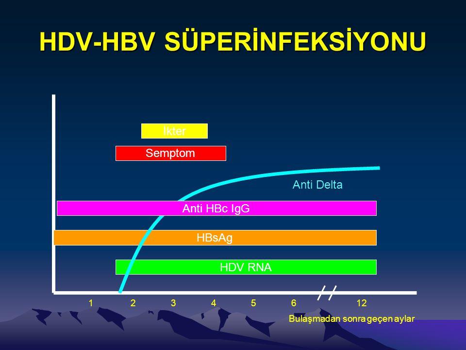 HDV-HBV SÜPERİNFEKSİYONU