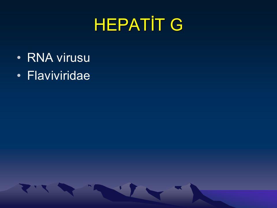 HEPATİT G RNA virusu Flaviviridae