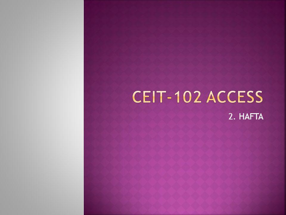 CEIT-102 Access 2. HAFTA
