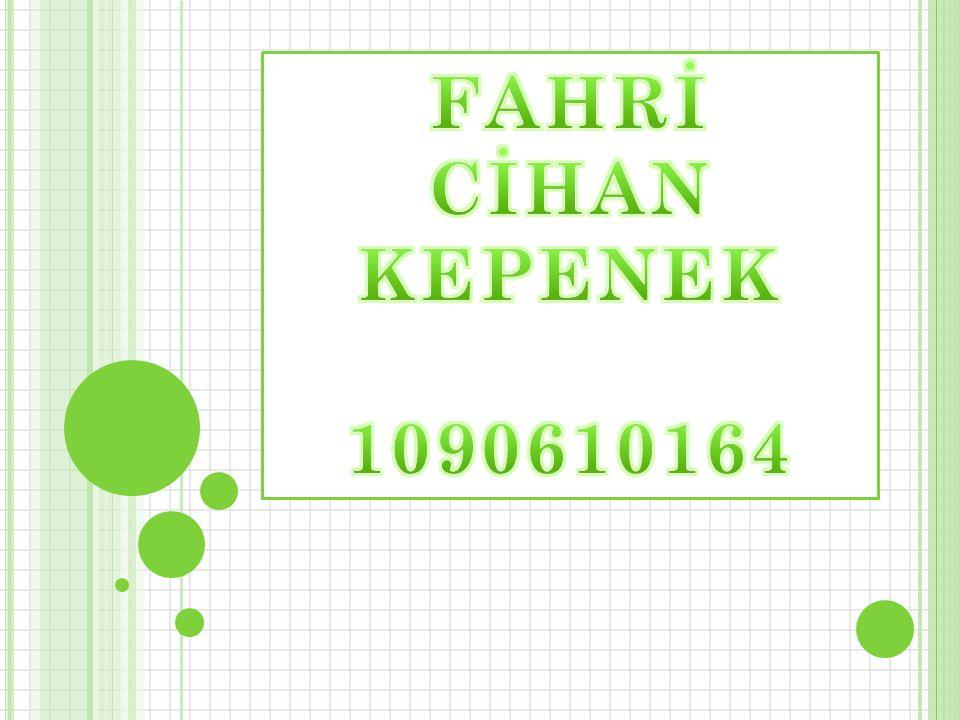 FAHRİ CİHAN KEPENEK 1090610164