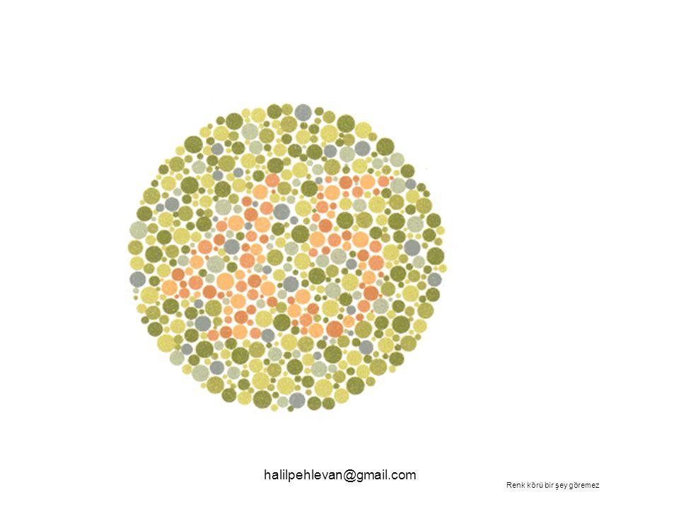 halilpehlevan@gmail.com Renk körü bir şey göremez