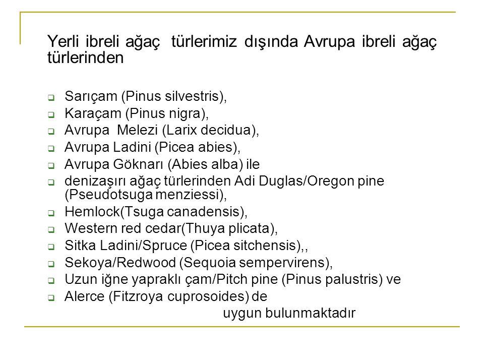 Yerli ibreli ağaç türlerimiz dışında Avrupa ibreli ağaç türlerinden